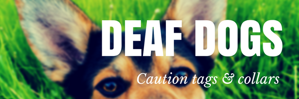 Deaf dog products